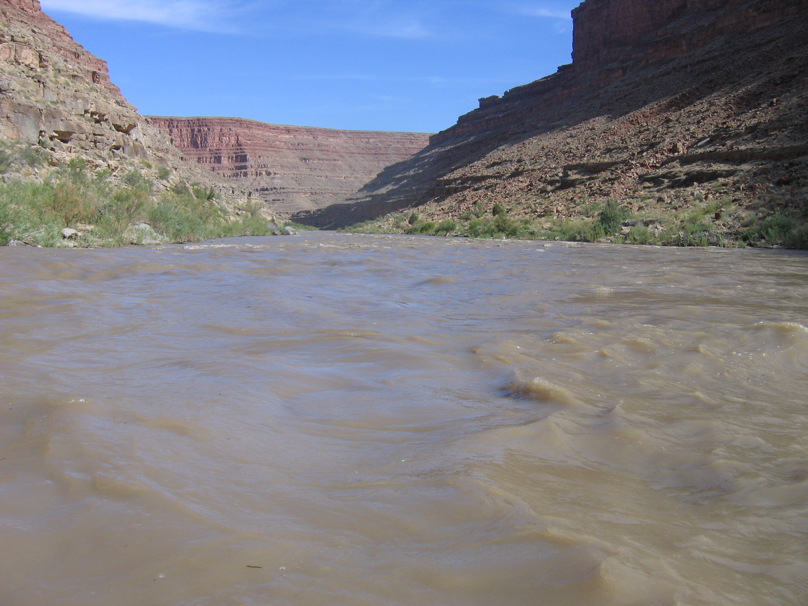 Brown river running through canyons