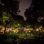Night shot of Umlauf Garden through the trees, Umlauf Garden Party Event